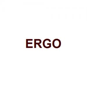 Ergo PIC