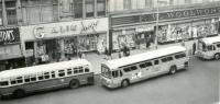 Buses in D...